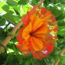 felted flower -summer beginning-
